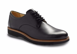 Founder Black Oxford